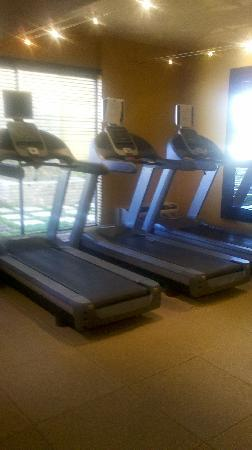 DoubleTree by Hilton Hotel Atlanta - Northlake : Another view fitness center