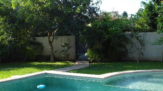 Casa Santiago: Pool at the big house