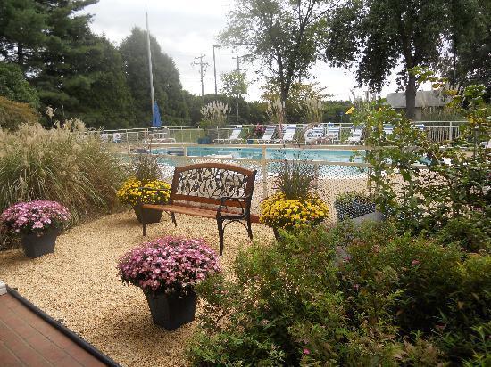 Best Western Fredericksburg: pool area