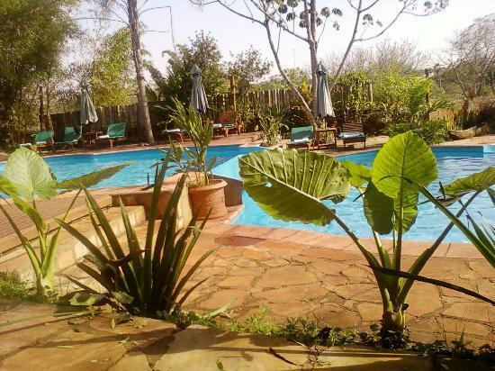 La Aldea de la Selva Lodge: parte de la piscina