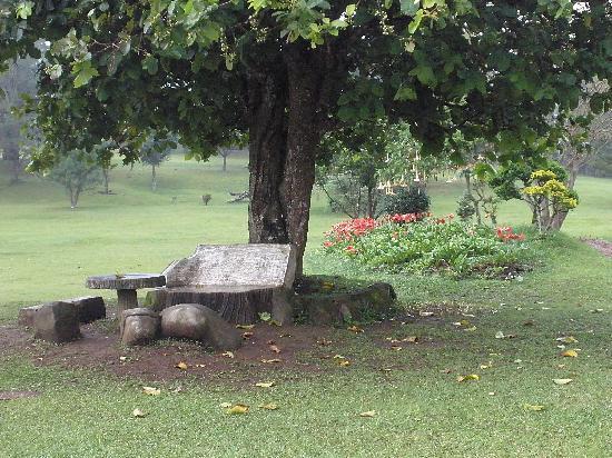 Sinabung Resort Hotel: Gardens