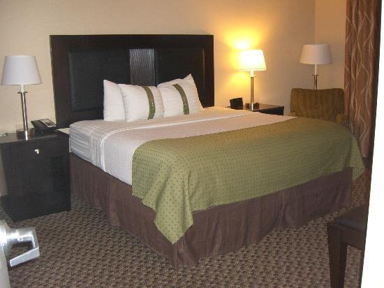 Holiday Inn Hotel & Suites Memphis-Wolfchase Galleria: Suite King Bed
