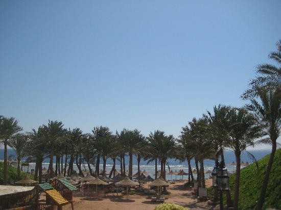 Sea Club Royal Nubian Island : La spiaggia