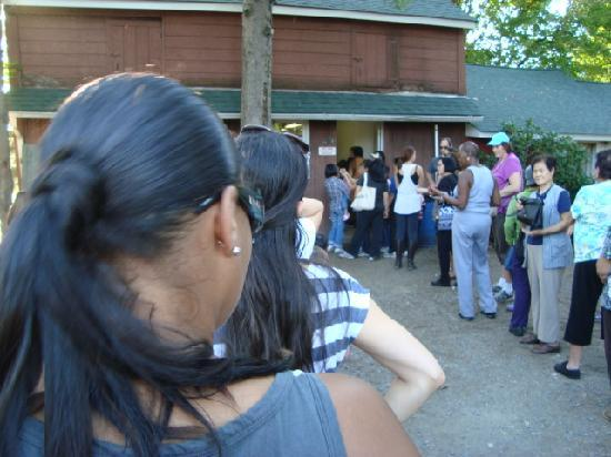 Maskar Orchards: Enjoy wating in line over 1/2 hour to get to their disgusting bathrooms!