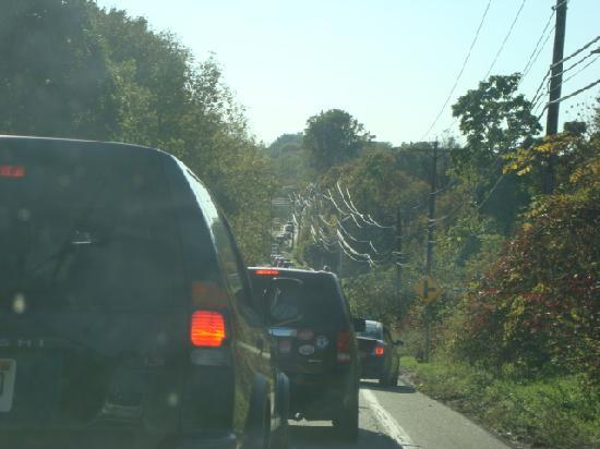 Maskar Orchards : Traffic jams as far as the eye can see - but WHY?
