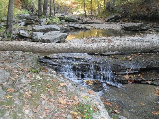 สเปนเซอร์, อินเดียน่า: McCormick's Creek Falls
