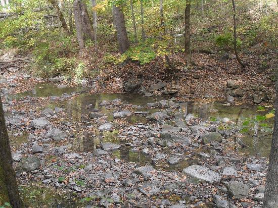 สเปนเซอร์, อินเดียน่า: creek/trail