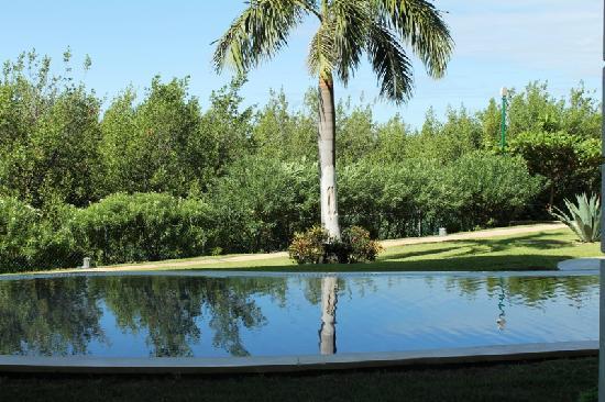 Secrets Silversands Riviera Cancun: swim-out room