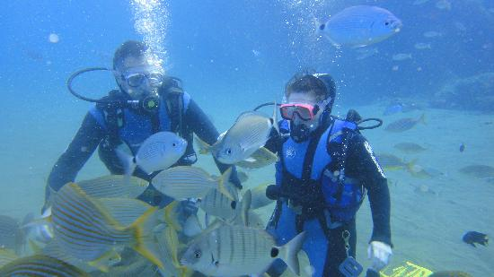 Manta Diving Lanzarote: Me under water with the fish.