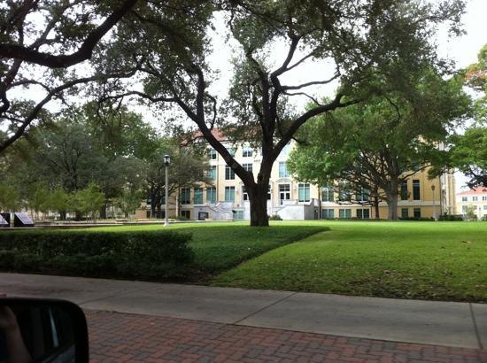 Texas Christian University: beautiful campus