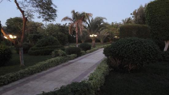Menaville Resort: очеь хорошая территория