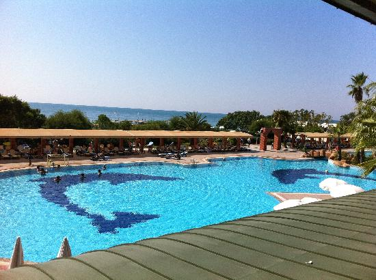 Maritim Pine Beach Resort: piscine