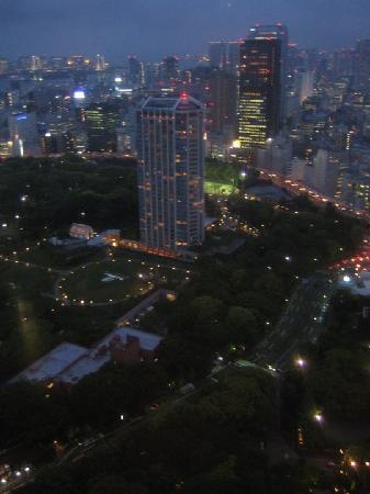 โรงแรมเดอะปรินท์ พาร์ค โตเกียว: The Prince Park Tower Tokyo hotel as seen from Tokyo Tower