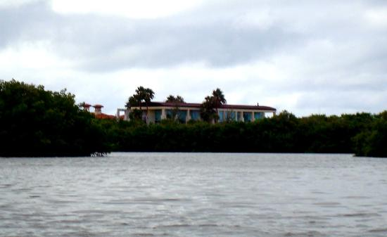 Siesta Key Bike and Kayak : Steven King's house