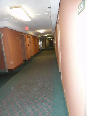 Trip Hotel Ithaca照片