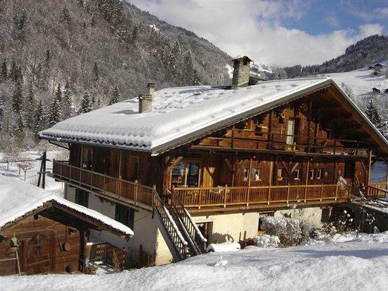 Gite La Bergeronnette: En hiver