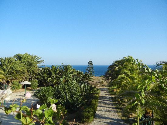 Quinta Do Mar Da Luz : Blick vom Pool aufs Meer