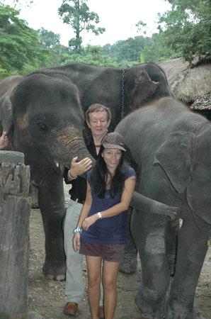 """The Park Hotel: Près de Chiang Mai avec les """"chang"""" et Siriporn"""