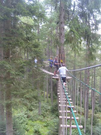 Aberfoyle, UK: Up in the treetops