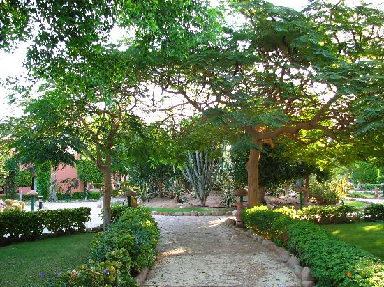 Nubian Village Hotel: Giardini