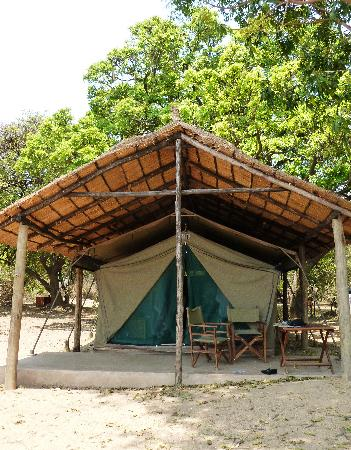Flatdogs Camp: our river-view safari tent