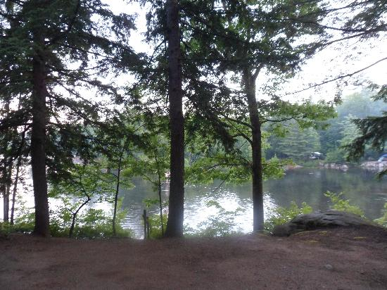 Cove Camping Area: View from our campsite.