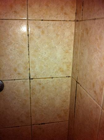 Hotel Windsor: Mould in the shower
