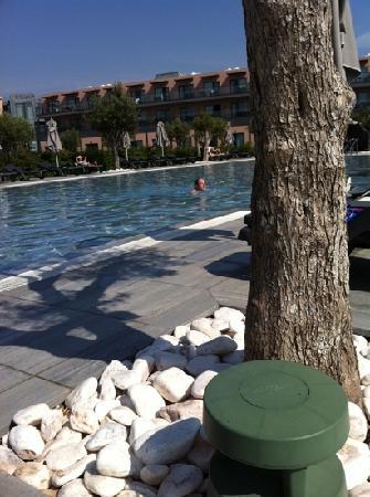 วีล่า เกล ลากอส โฮเต็ล: Vila Gale Pool