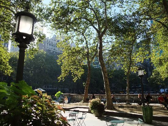 ไบรอันท์ปาร์ค: The view from the Cafe