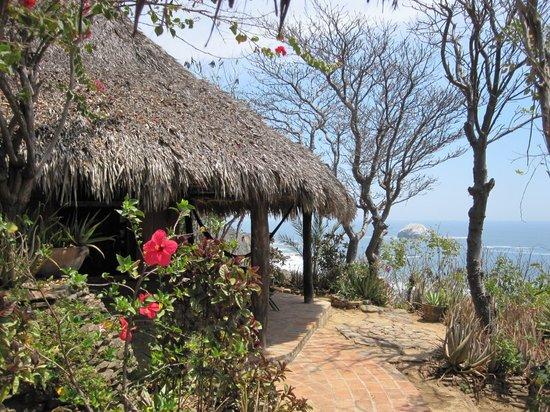 Mario's Rancho Cerro Largo : the rooms