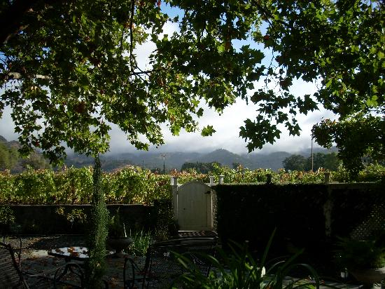 Chateau de Vie: View from the deck