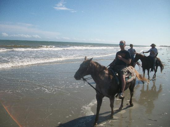 Horseback Riding Of Myrtle Beach : My husband and I heading into the water
