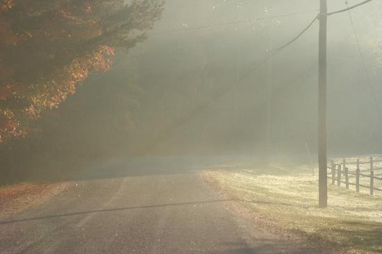 Shamrock Lodge: The mist on the road in the morning.