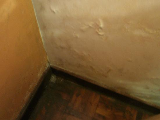 Palm Village Hotel: paint falling off walls