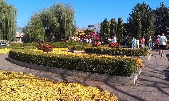 Chicago Botanical Garden Picture Of Chicago Botanic