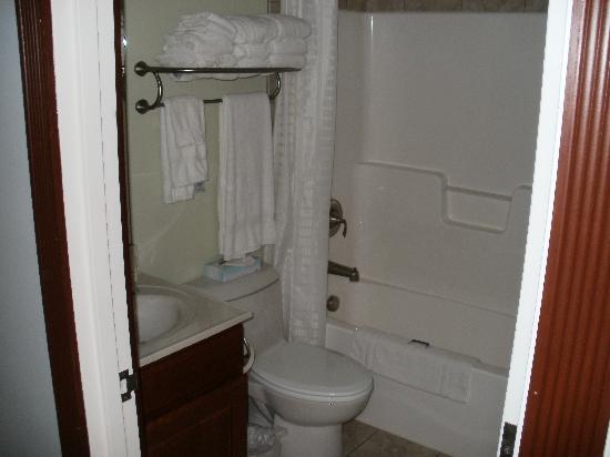 Marina Inn & Suites: bathroom