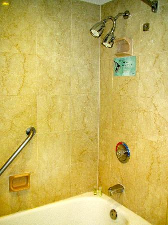 The Westin Prince Toronto: Westin Prince Rm 1108 Bathroom