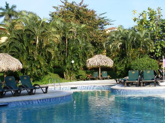 Occidental Papagayo - Adults only: PISCINE