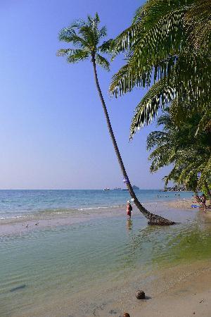 K.B. Resort: Paradise