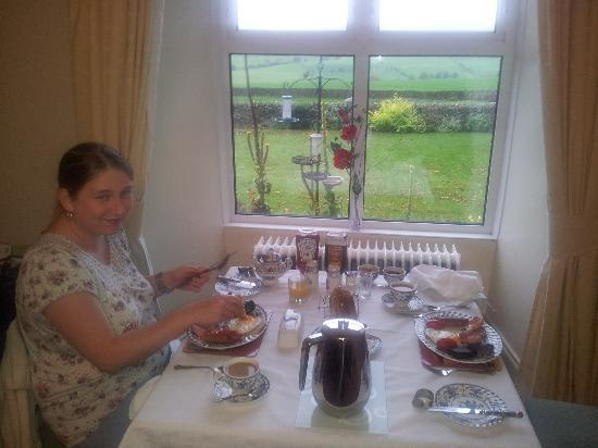 Newlands Hall Farmhouse B&B: Finely laid out table, Grapefruit Delicious