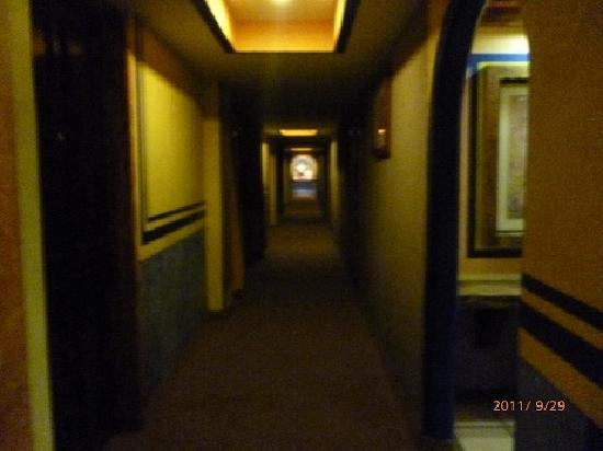 Posada Viena Hotel: ろうか