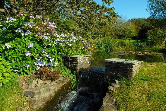 The Old Rectory Hotel: Tranquil garden at the Old Rectory