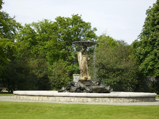 Iveagh Gardens : One of the fountains