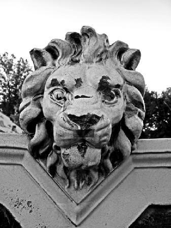 Moonrise Hotel: Another U City Lion