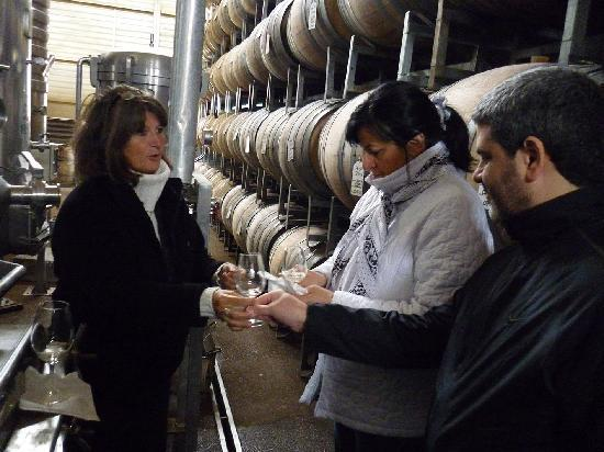 Vendimia Wine Tours: Ruta del vino en Mendoza 2011