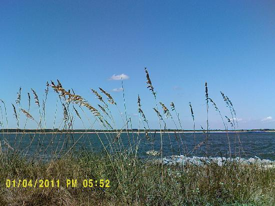 Beachside Motel: Sea oats waft in the breeze