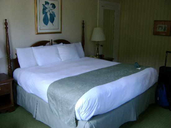 Arlington Resort Hotel & Spa: Our bedroom