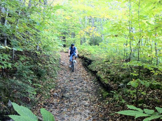 Grand Island: Going downhill in one of the trails