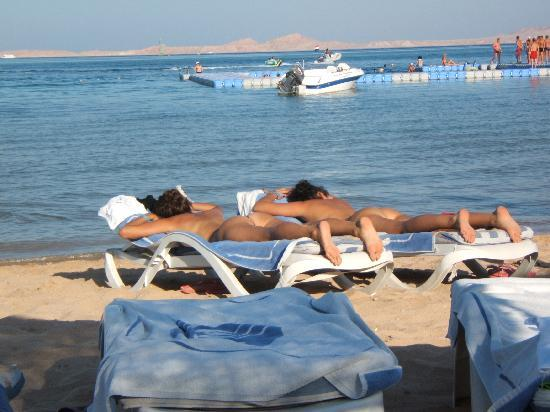 Aurora Sharm Resort : thi is what happens when you let your husband loose with the camera