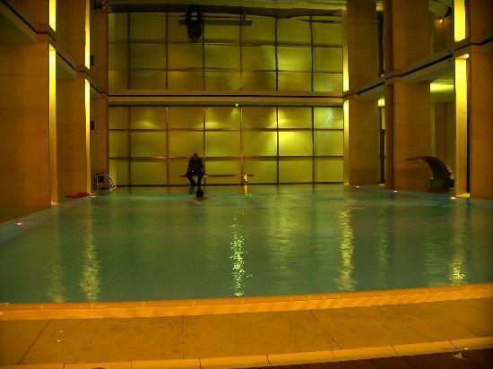Sofitel Warsaw Victoria: Pool in Grün